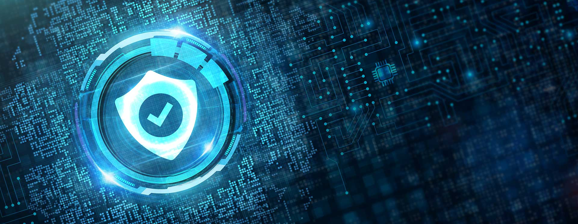 What Are Data Security Solutions and How Do They Work