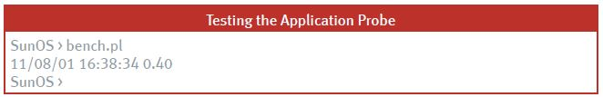 application probe for Oracle query