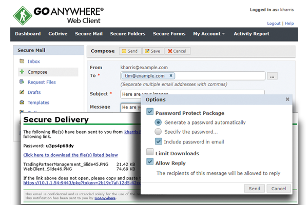 Browser-based GoAnywhere web client for secure file transfer
