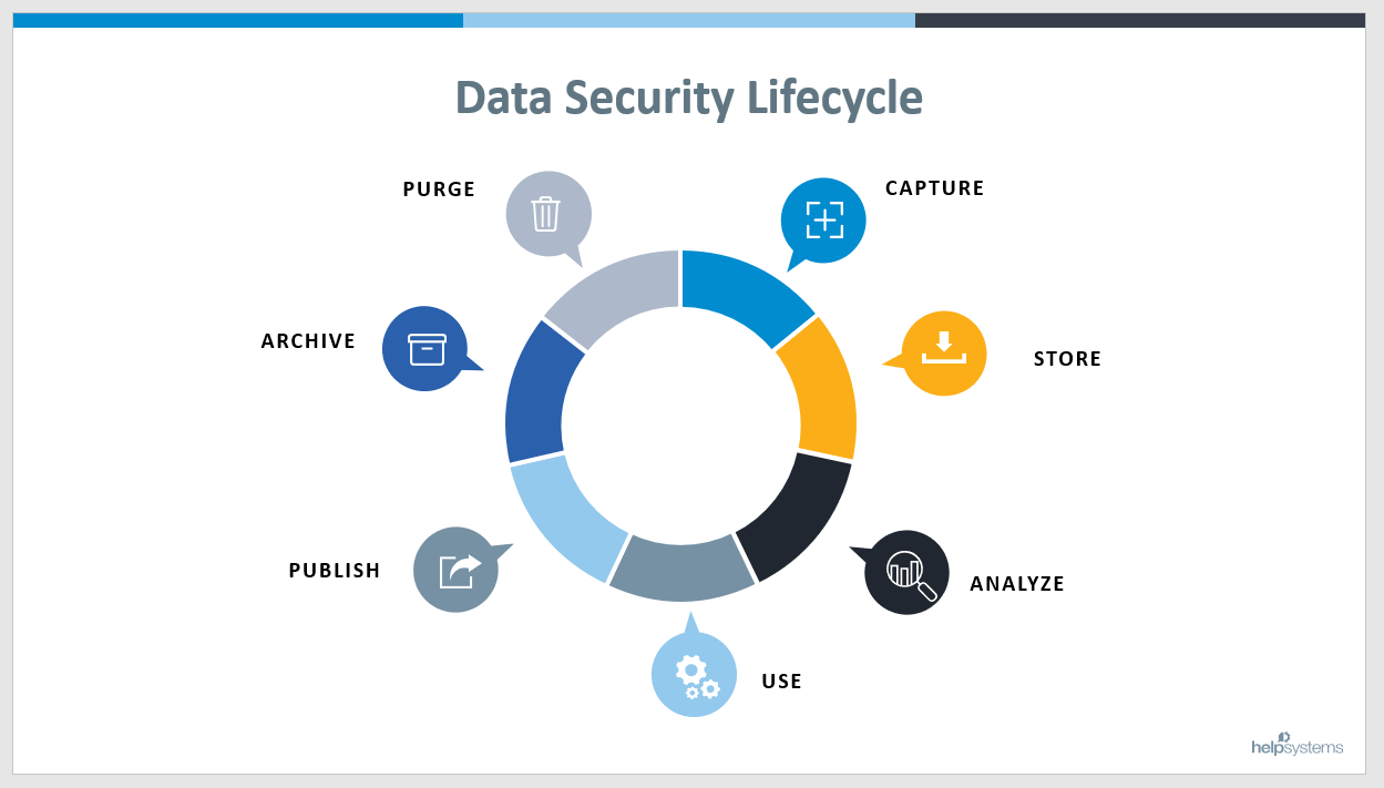 Data security lifecycle wheel with seven sections: Capture, Store, Analyze, Use, Publish, Archive, Purge