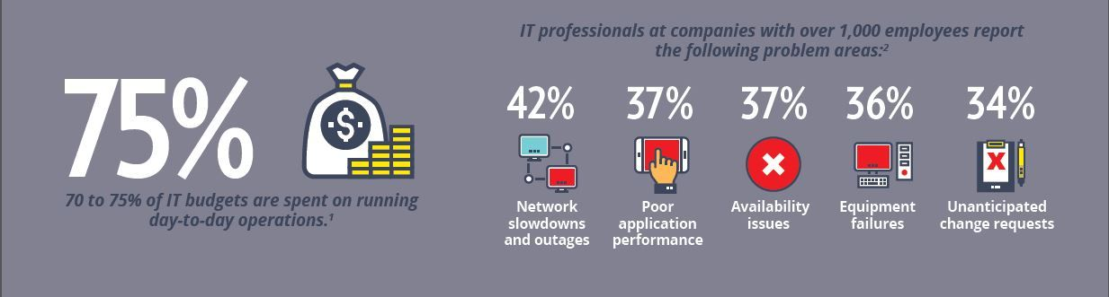 It professionals report these problem areas