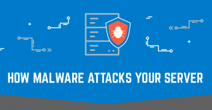 How malware attacks your server infographic