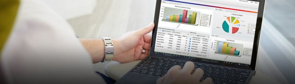 A CEO analyzes key business data in executive dashboards