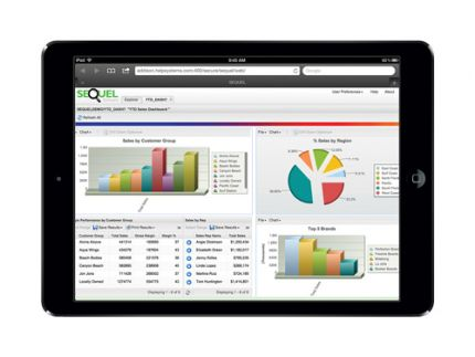 Executive dashboards help you take the temperature of your business